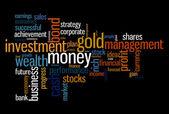 Wealth management portfolio info text graphics and arrangement concept — Stock Photo