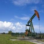 Постер, плакат: Oil pump jack in work Oil industry in Seria Brunei Darussalam