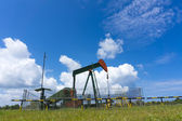 Oil pump jack in work. Oil industry in Seria, Brunei Darussalam — Stock Photo