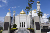 BANDAR SERI BEGAWAN(BSB), BRUNEI-NOV. 4:Entrance to Masjid Sulta — Stock Photo