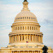 Royalty-Free Stock Photo: US Capitol Building