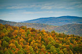 Shenandoah National Park In The Fall — Stock Photo