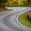 S-Curve Road Skyline Drive — Stock Photo #24938491