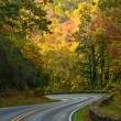 S-Curve Road Skyline Drive — Stock Photo