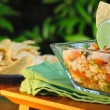 Ceviche and Chips — Stock Photo #26952123