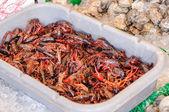 Kräftor på en fiskmarknad — Stockfoto