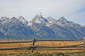Wooden fence and Teton Range — Stock Photo
