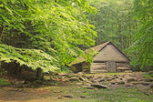 Wooden barn in forest — Stock Photo