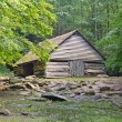 Wooden barn on clearing — Stockfoto