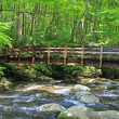 Stock Photo: Bridge over Pigeon River