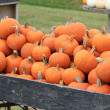Stock Photo: Heavily loaded cart with orange pumpkins