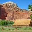 Red cliffs, wooden barn and horses — Stock Photo