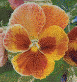 Embroidered pansy — Stock Photo