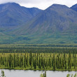 Tundra of Alaska — Stock Photo