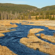 Creek in Yellowstone — Stock Photo