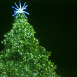 Green blurred Christmas tree on dark background — Stock Photo