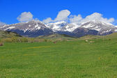 Meadow and Crazy Mountains — Stock Photo