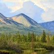 Stock Photo: Landscape of Alaska