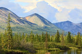 Landscape of Alaska — Stock Photo