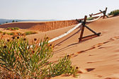 Wooden fence on sand dune — Stock Photo
