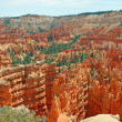 Stock Photo: Orange landscape in Bryce Canyon