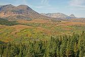 Meadows and mountains, Montana — Stock Photo