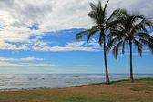 Two palm trees on Maipalaoa Beach Park — Stock Photo