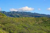 View from Diamond Head — Stock Photo
