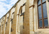 Contraforte gótica da catedral de san fernando — Foto Stock