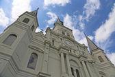 Catedral de st. louis — Foto Stock