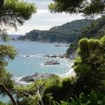 Costa Brava landscape, Lloret de Mar, Catalonia, Spain — Stock Photo