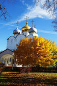 Smolensk Cathedral of the Novodevichy Convent, Moscow, Russia — Stock Photo