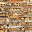 Coniferous and deciduous wood stacked in a pile — Stock Photo