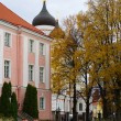 Stock Photo: Park next to the Alexander Nevsky Cathedral in Tallinn. Estonia.