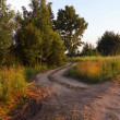 Bumpy country road leading into the forest. Russian — Foto de Stock