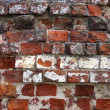 Stock Photo: Old brickwork with timestamps