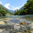 The crystal clear water of a mountain river, Abkhazia — Stock Photo