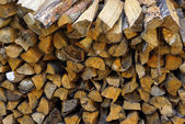 Coniferous and deciduous wood stacked in a pile — Stockfoto