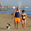 RIMINI August 31, man and the woman with a dog on the coast of t — Stock Photo