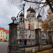 Park next to the Alexander Nevsky Cathedral in Tallinn. Estonia. — Stock Photo