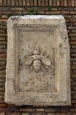 Bas 苍蝇,罗马,意大利. — Photo