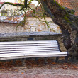 White bench in autumn park — Stock Photo #38046397