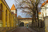 Streets of old Tallinn, Estonia, Europe — Stock Photo