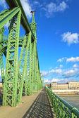 Liberty Bridge Budapest, Hungary — Photo