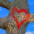 Red heart on tree bark — Stock Photo #39827737