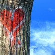Red heart on tree bark — Stock Photo