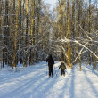 Ski trip in the winter forest — Stock Photo