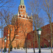 Trinity Tower of Moscow Kremlin, Russia — Stock Photo