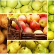 Collage of ripe apples and pears — Stock Photo