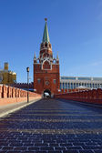 Trinity Tower of Moscow Kremlin, Russia — Stock Photo